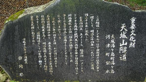 DSC09361_R.JPG