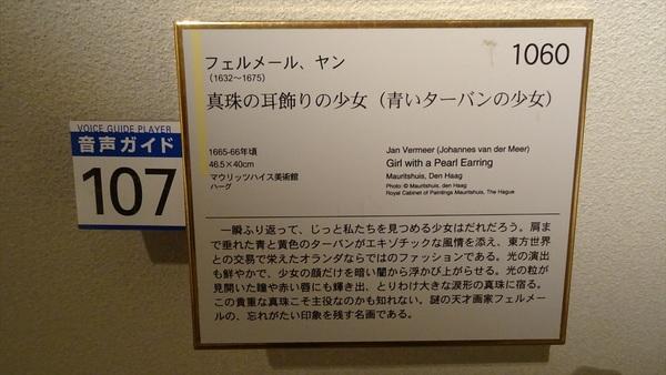 DSC08286_R.JPG