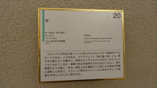 DSC08325_R.JPG