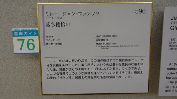 DSC08597_R.JPG